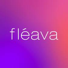PT. Fleava Digital Media